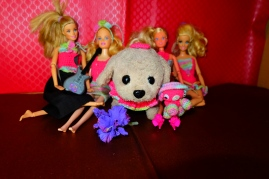 Rainbow: The Amigurumi Bear with friends